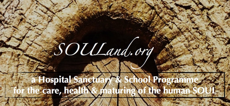 SOULand ~ a Hospital Sanctuary and a School Programme for the care, health and maturing of the human SOUL